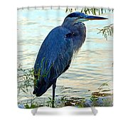 Navarre Gbh I Mlo Shower Curtain
