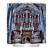 Nave Organ And Paintings Of Saint Cecile Shower Curtain