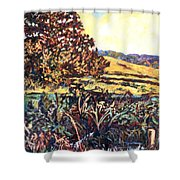 Near Childress Shower Curtain