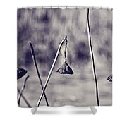 Near The End Shower Curtain