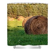 Nearing The Golden Hour 3d21653 Shower Curtain