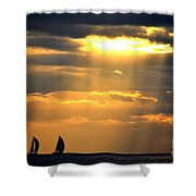 Nearly Home For The Night Shower Curtain