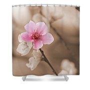 Nectarine Flower Blooming Shower Curtain
