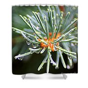 Needle Tips Shower Curtain