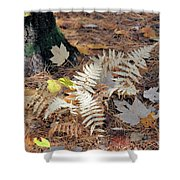 Needles And Leaves Shower Curtain
