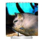 Negative Cat Shower Curtain