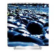 Neighborhood 8 - Seagull Shower Curtain