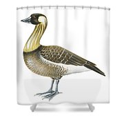 Nene Shower Curtain