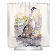 Nene -hawaiian Goose Shower Curtain