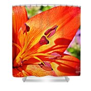 Neon Asiatic  Shower Curtain