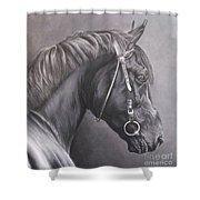 Nero 2 Shower Curtain