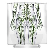 Nervous System, Illustration Shower Curtain