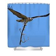 Nest Building Osprey Shower Curtain