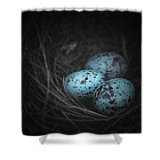 Nest Of 3  Shower Curtain