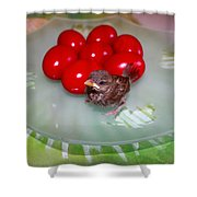 Nestling And Red Eggs Shower Curtain