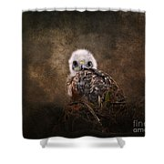 Nestling Shower Curtain