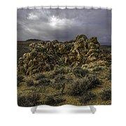 Nevada Desert Skies Shower Curtain