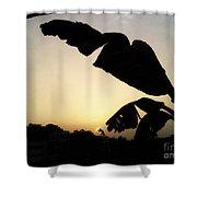 Never Let You Go Sun Shower Curtain