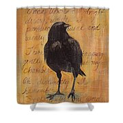 Nevermore I  Shower Curtain