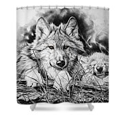 New Adventures Shower Curtain