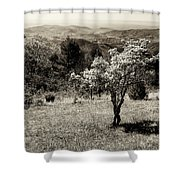 New Blooms In North Carolina Shower Curtain