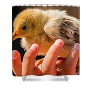 New Chick Shower Curtain