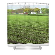 New Crop Shower Curtain
