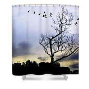 New Dawn Shower Curtain