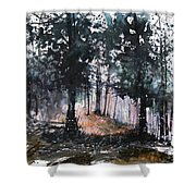 New England Landscape No.214 Shower Curtain