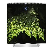 New Growth 25871 2 Shower Curtain