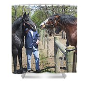 New Horse In The Herd Shower Curtain