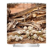 New Life Grows Shower Curtain