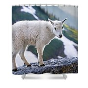 New Life In The High Country Shower Curtain