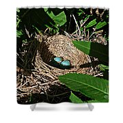 New Life - Robin's Nest Shower Curtain