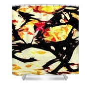 New Mexico Autumn Shower Curtain