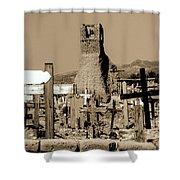 New Mexico Dusk Shower Curtain