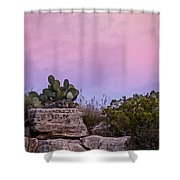 New Mexico Sunset With Cacti Shower Curtain