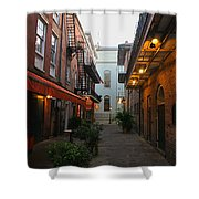 New Orleans Ally Shower Curtain