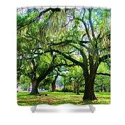 New Orleans City Park - Live Oak Shower Curtain