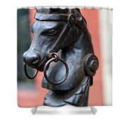 New Orleans Horse Tether Shower Curtain