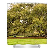 New Orleans' Tree Of Life 2 Paint Shower Curtain