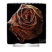 Perfect Gothic Red Rose Shower Curtain
