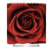 Close Up Heart Of A Red Rose Shower Curtain
