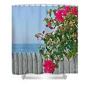 New Photographic Art Print For Sale On The Fence Montecito Bougainvillea Overlooking The Pacific Shower Curtain