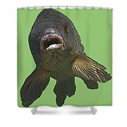New Photographic Art Print For Sale   Open Mouthed Fish In Green Water Shower Curtain