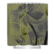 New Photographic Art Print For Sale Orchids 11 Shower Curtain