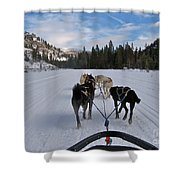 Riding Through The Colorado Snow On A Husky Pulled Sled Shower Curtain