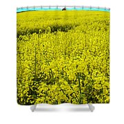 New Photographic Art Print For Sale Yellow English Fields 4 Shower Curtain