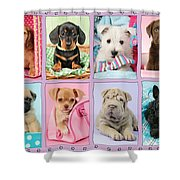New Puppy Multipic Shower Curtain by Greg Cuddiford