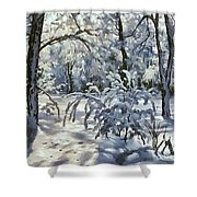 New Snow Shower Curtain